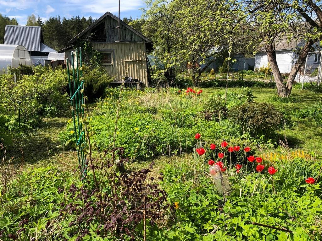садовое товарищество Урожай, продажа, дача